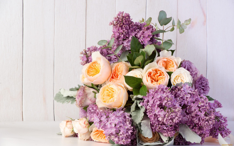 Картинки композиции в цвете для